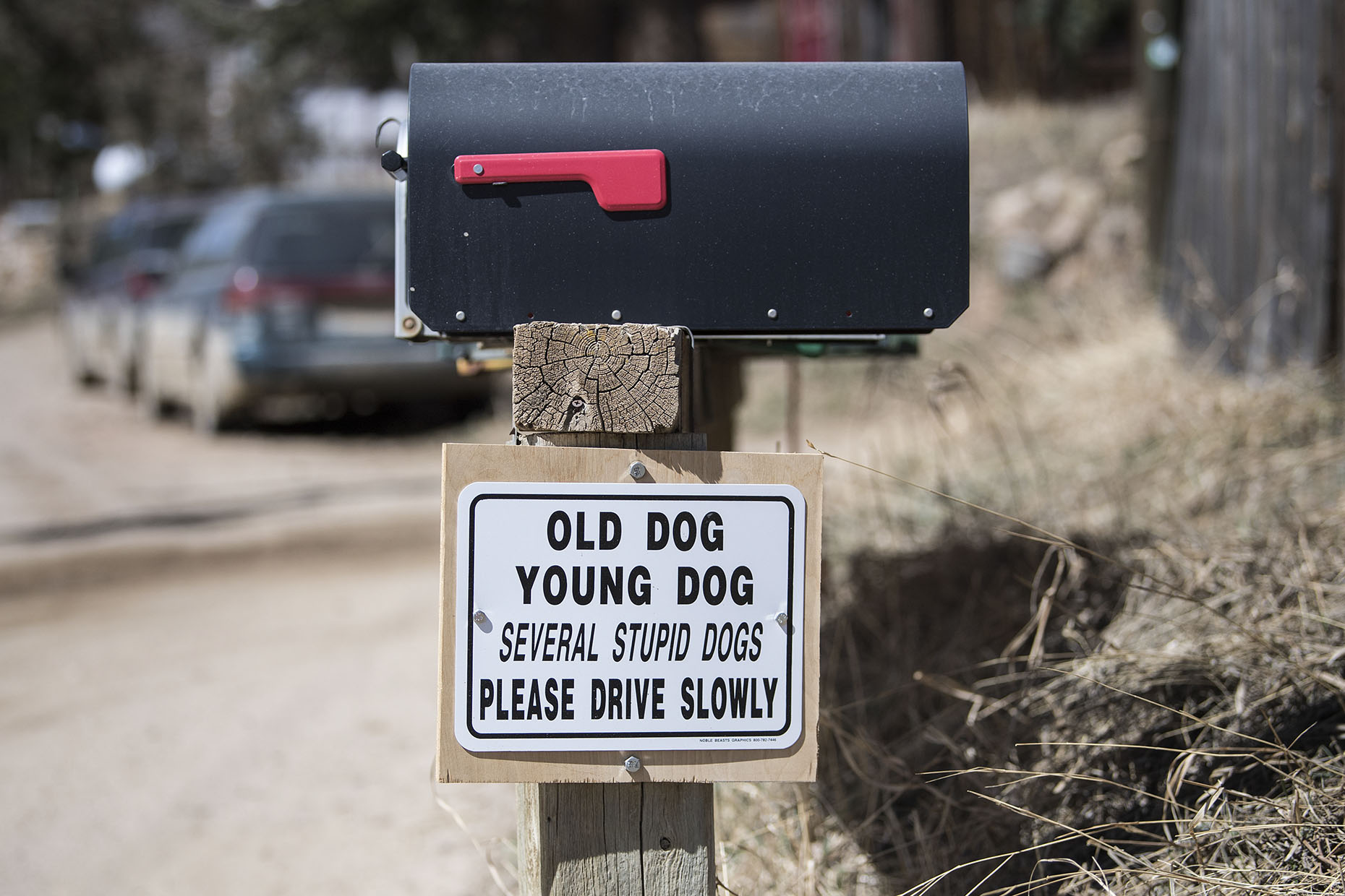 202104xx_dog-sign-gold-hill_photoreporters_001