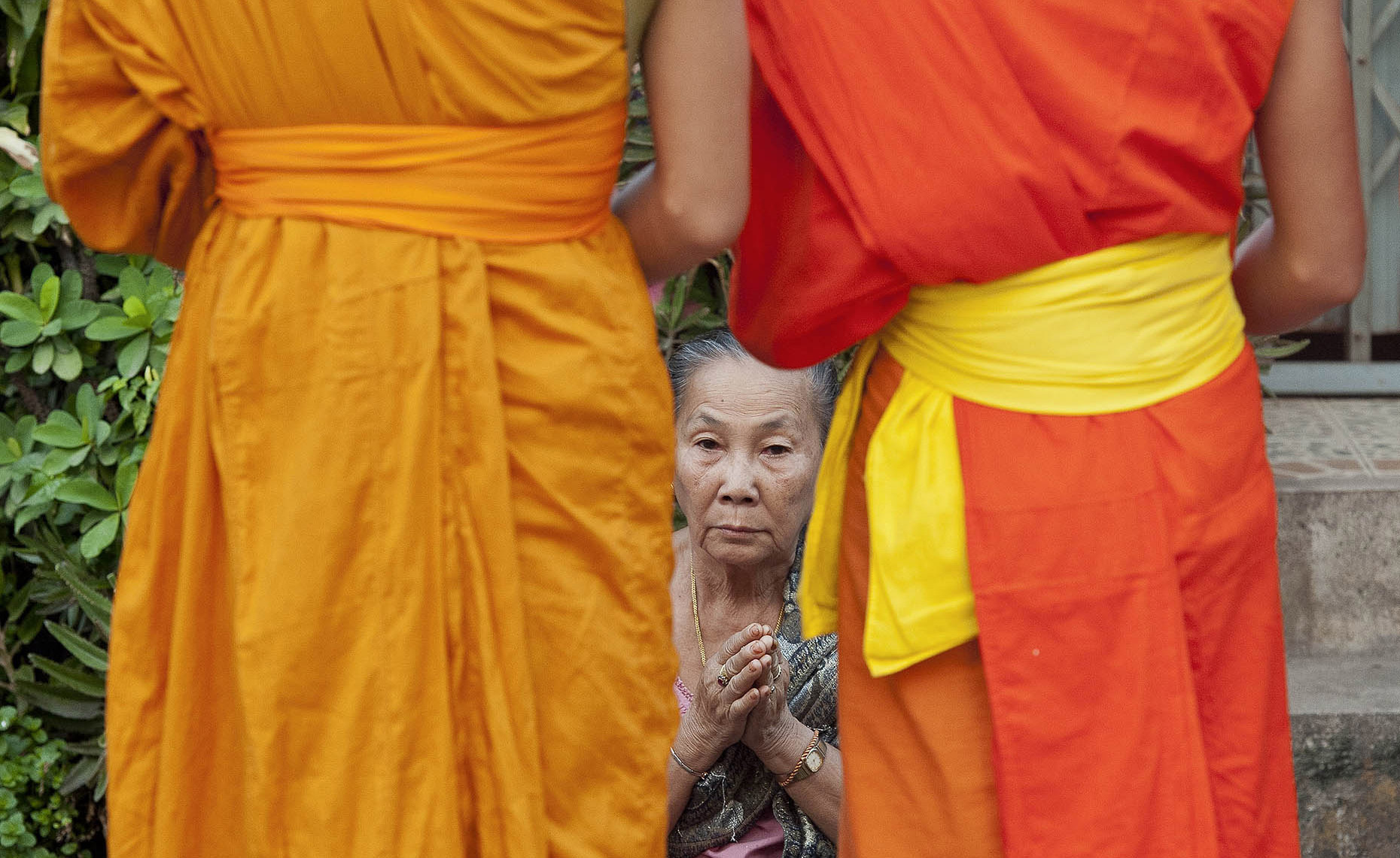 TRA_PhotoReporters_Woman-offers-prayers-to-monks-during-tak-bat-procession_Luang-Prabang_Laos